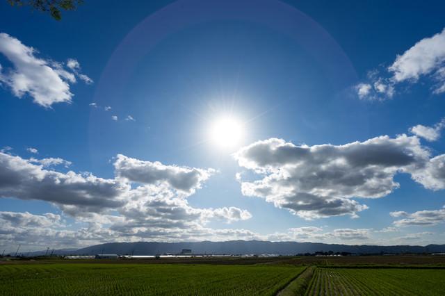 太陽と大刀洗の畑の写真