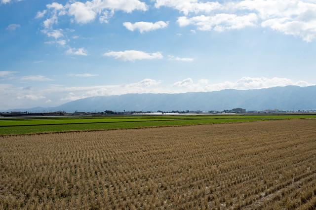 刈終えた田んぼと大刀洗の平野の写真