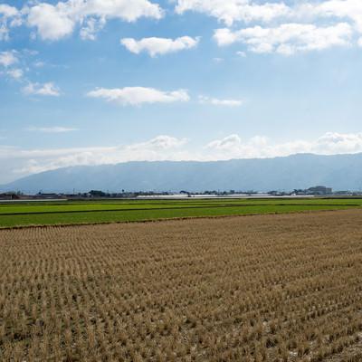「刈終えた田んぼと大刀洗の平野」の写真素材