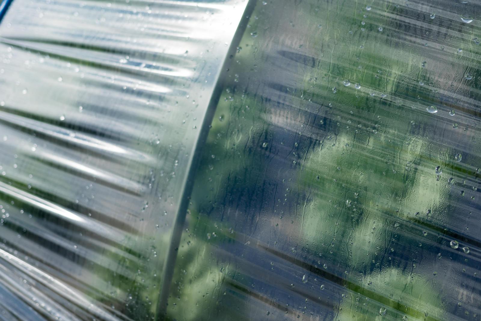 「ハウスに付いた水滴(大刀洗町)」の写真