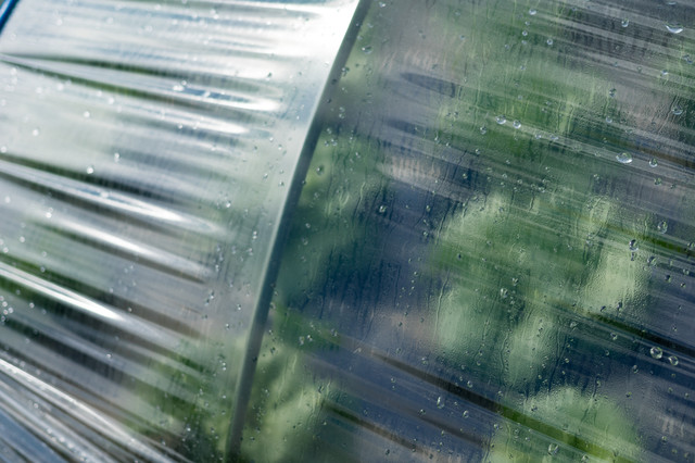 ハウスに付いた水滴(大刀洗町)の写真