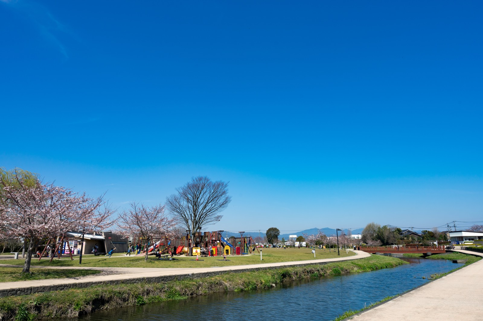 「大刀洗公園の春」の写真