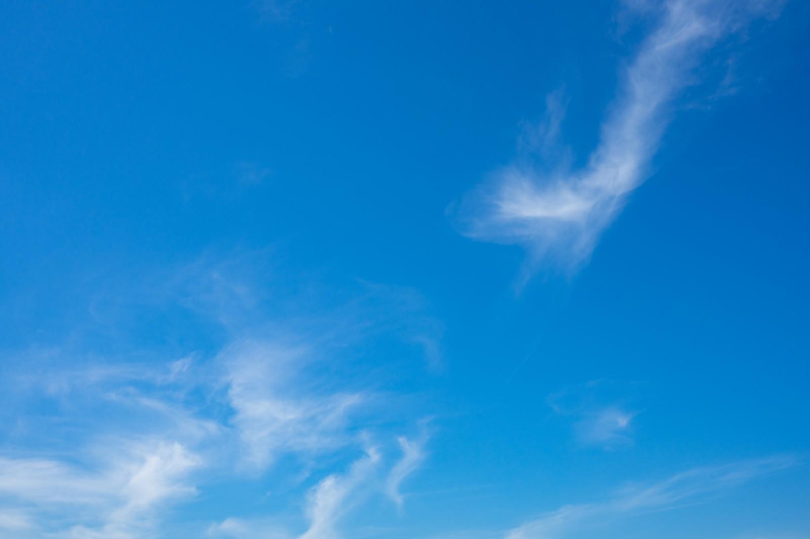 「よく晴れた日」の写真