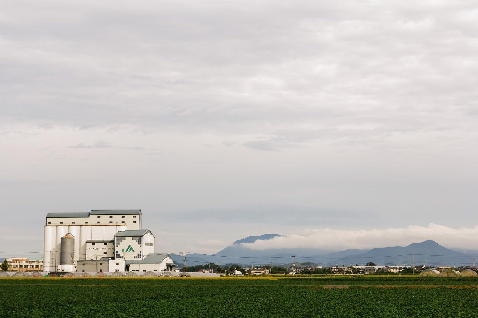 「大刀洗町のJA施設と広がる農地大刀洗町のJA施設と広がる農地」のフリー写真素材を拡大