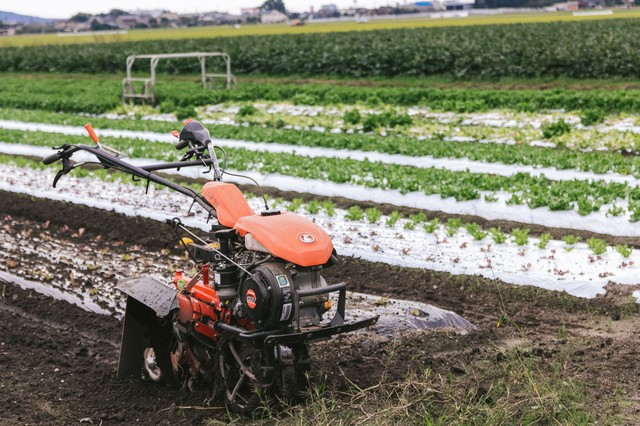 サニーレタス畑と耕うん機の写真