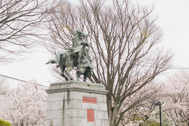 大刀洗公園の菊池武光像と桜の写真