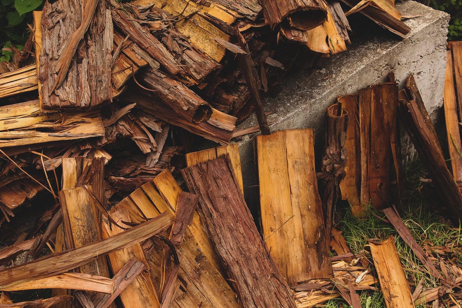 「散らばった樹皮」の写真
