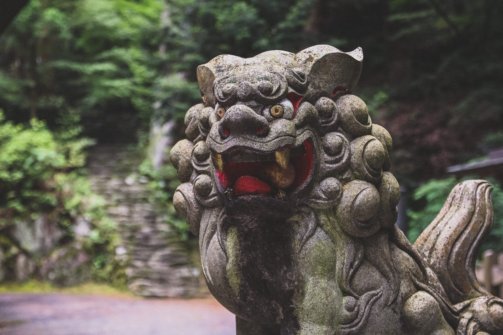 「狛犬」の写真