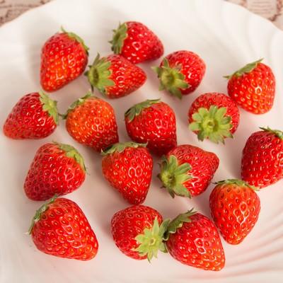 「お皿の上に散らばった採れたての苺」の写真素材