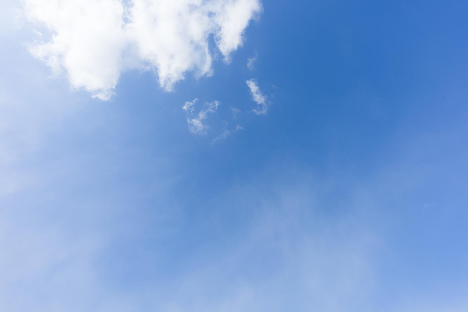 「空を見上げる」の写真