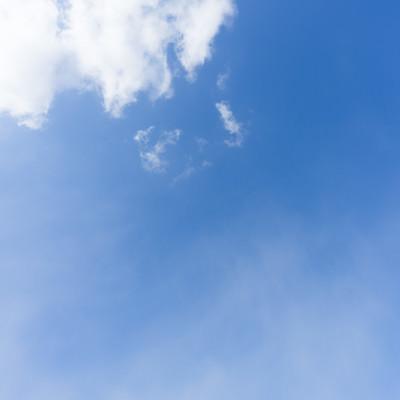 空を見上げるの写真