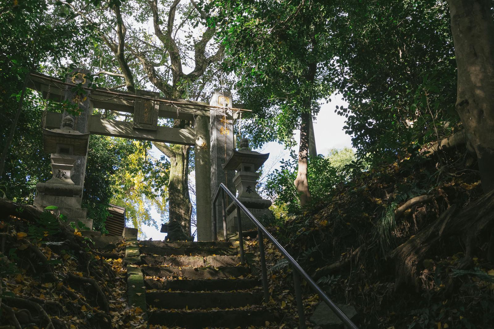 「福岡県大刀洗の甲条神社の鳥居」の写真