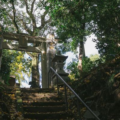 「福岡県大刀洗の甲条神社の鳥居」の写真素材