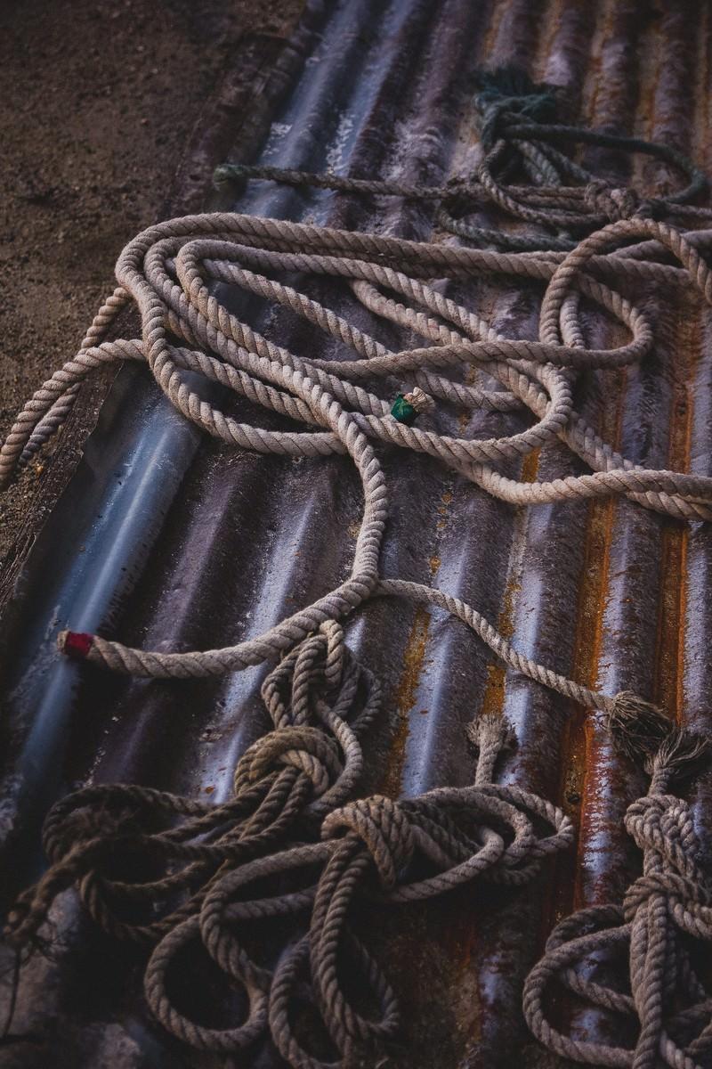 「廃棄されたロープ」の写真