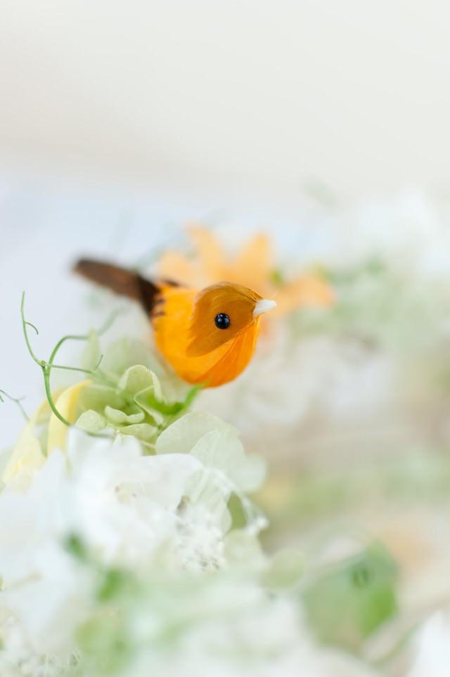 お花と小鳥ちゃんの写真