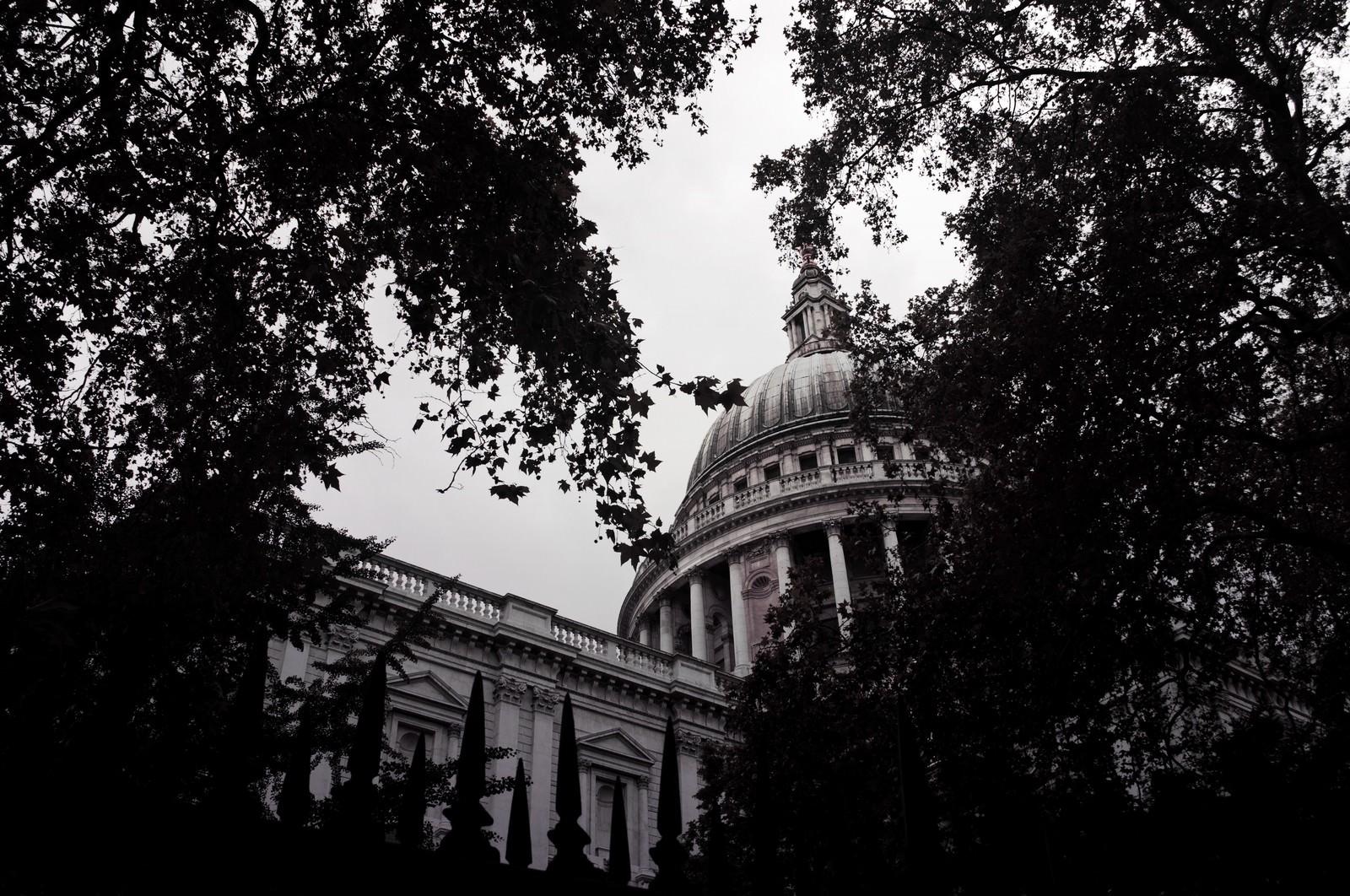 「木々の合間から見える洋館(ロンドン)」の写真