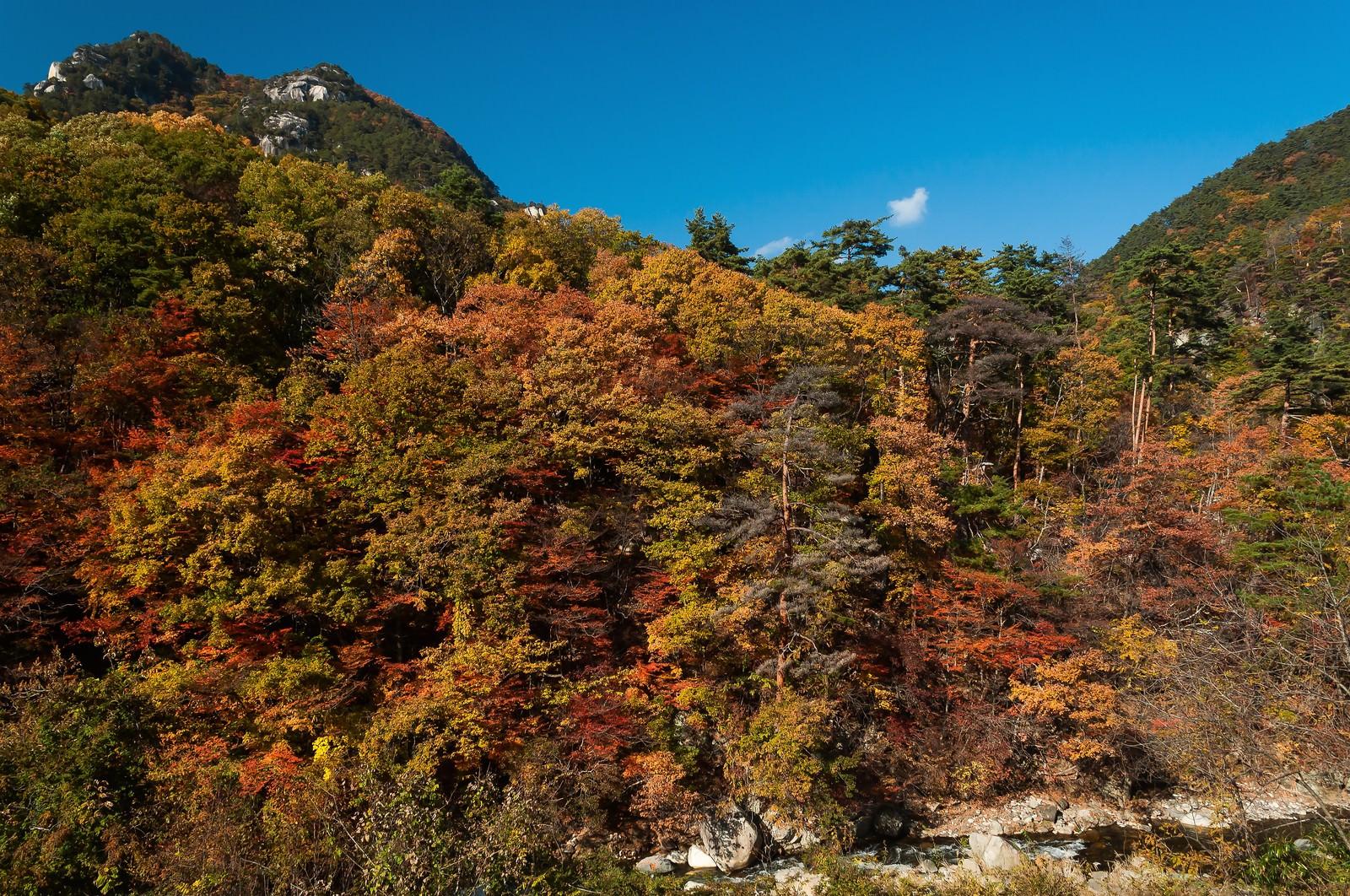 「秋の山」の写真