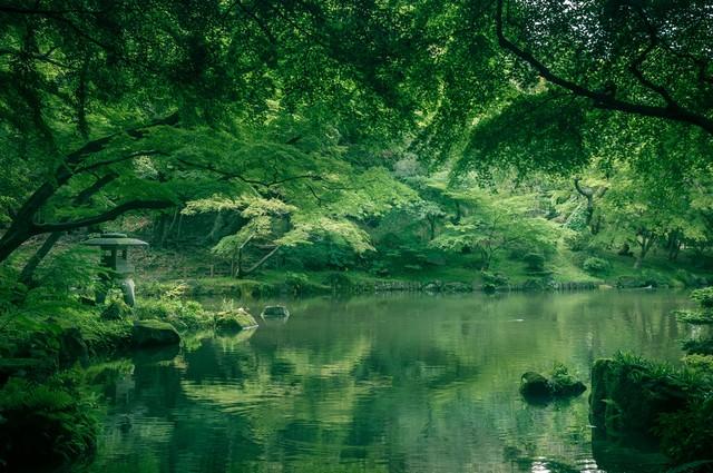 成田山(竜智の池)の写真