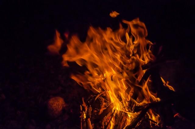 夜の焚き火の写真