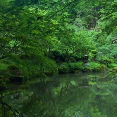成田山の写真
