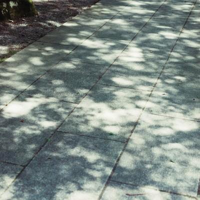「石畳(縦)」の写真素材