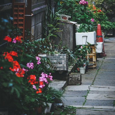 「路地裏」の写真素材