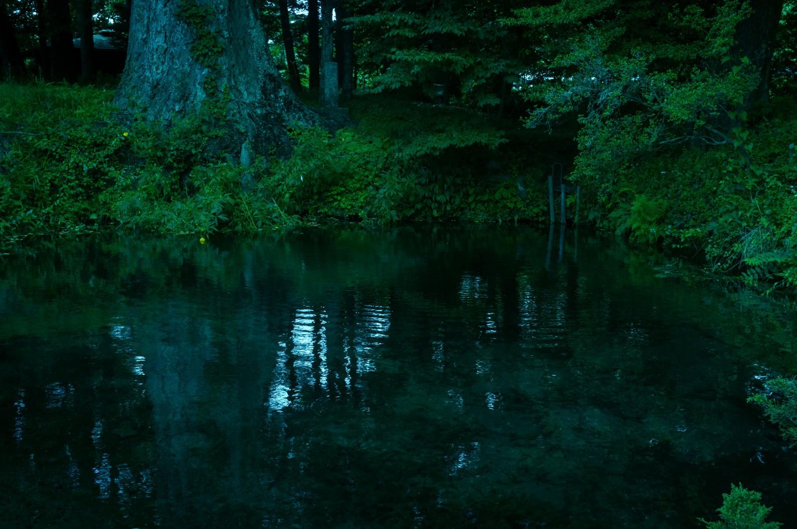 「底なし池」の写真