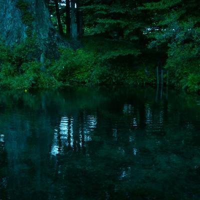 底なし池の写真