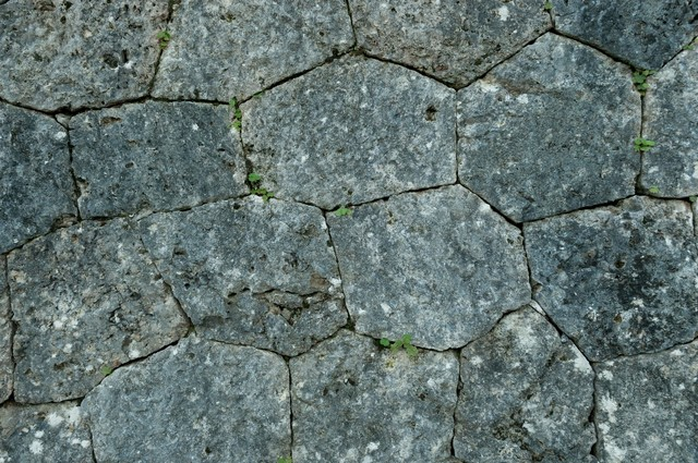 石垣のテクスチャーの写真
