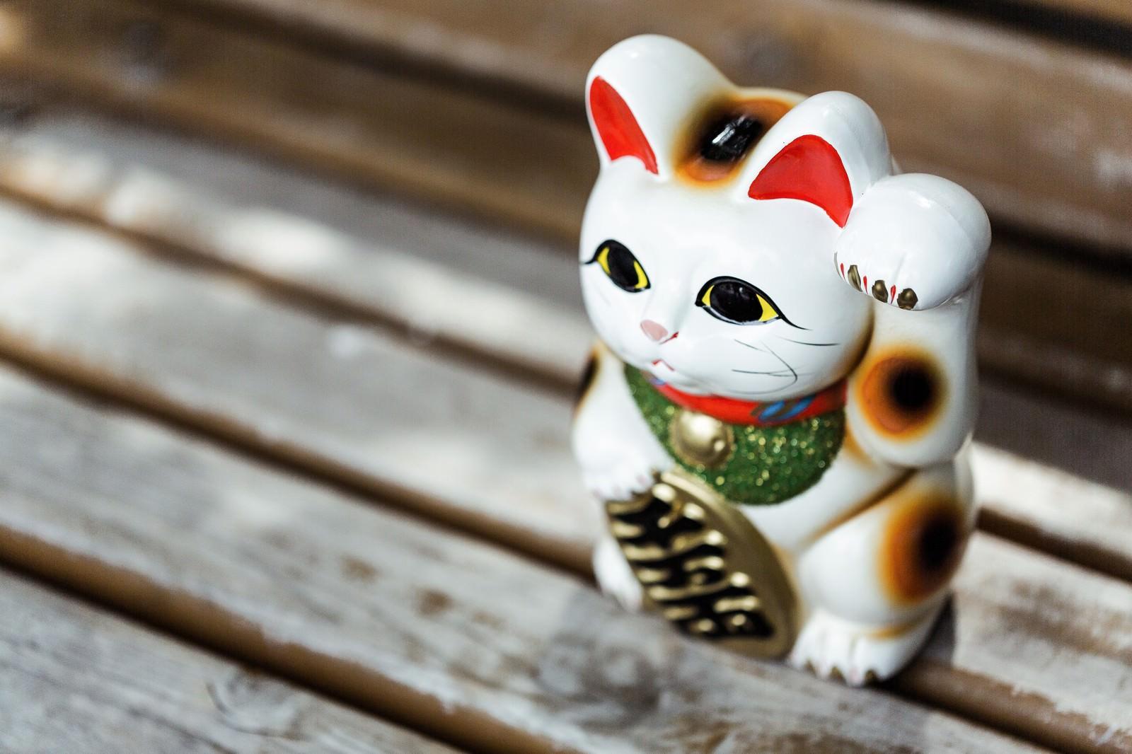 「招き猫 フリー素材」の画像検索結果