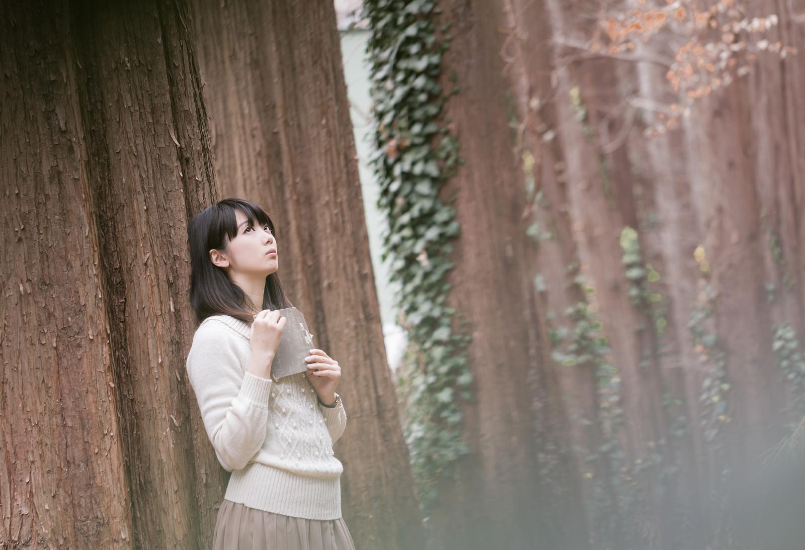 「森に迷い込んだ読書美女」の写真[モデル:白鳥片栗粉]