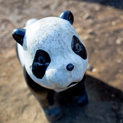 「ボロボロのパンダの遊具」の写真素材