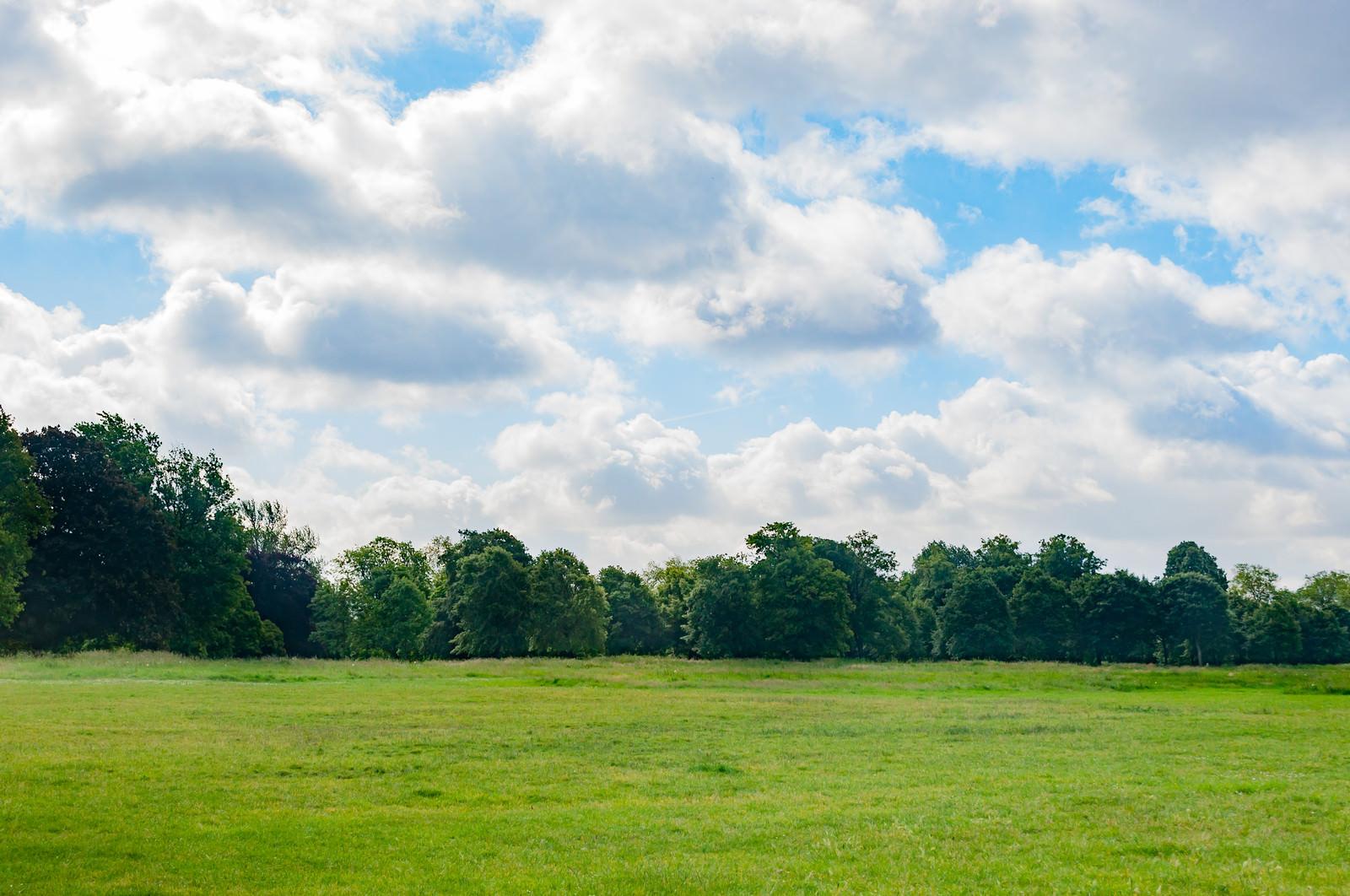 「ハイドパーク」の写真