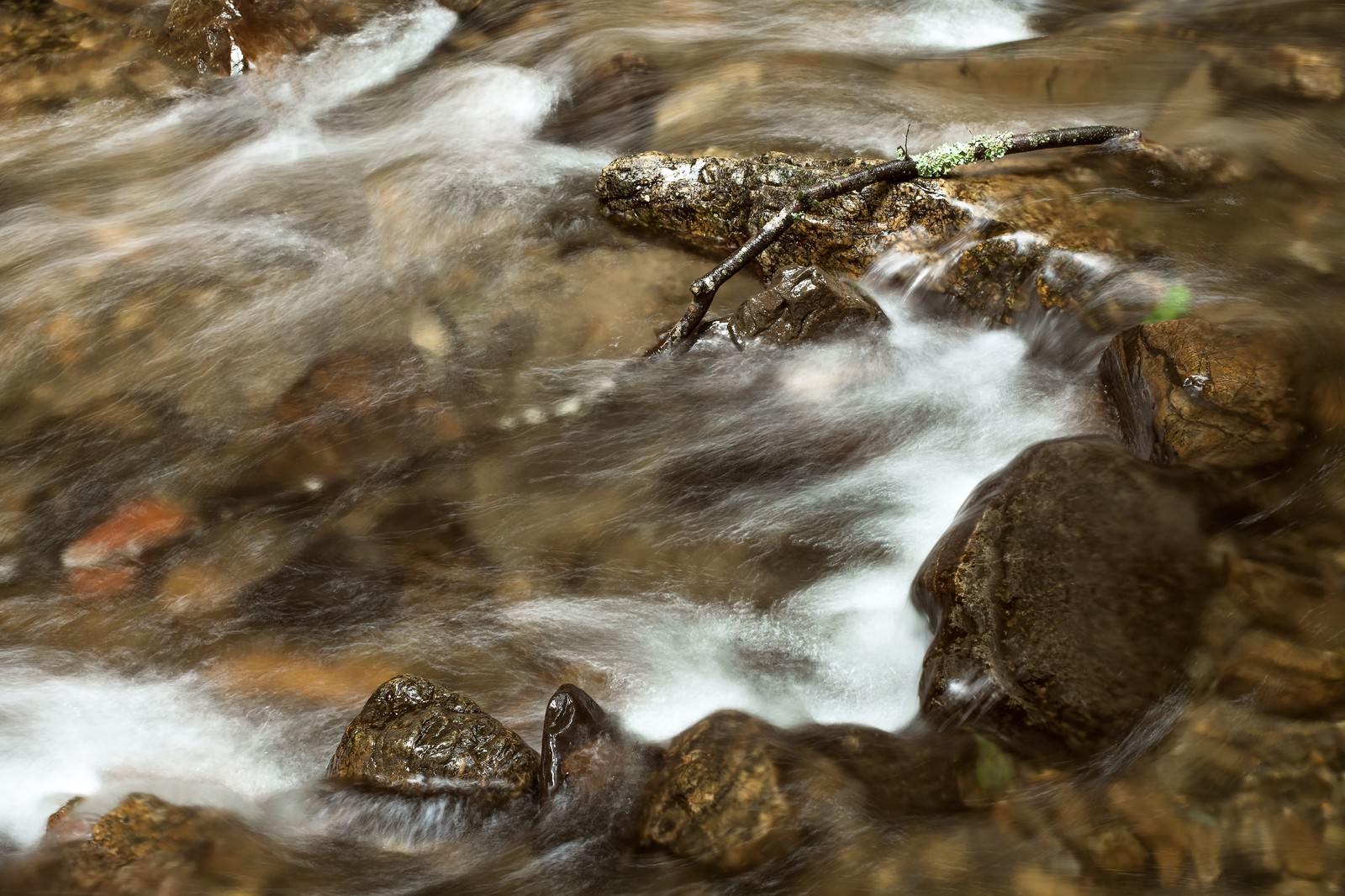 「小川の流れ」の写真