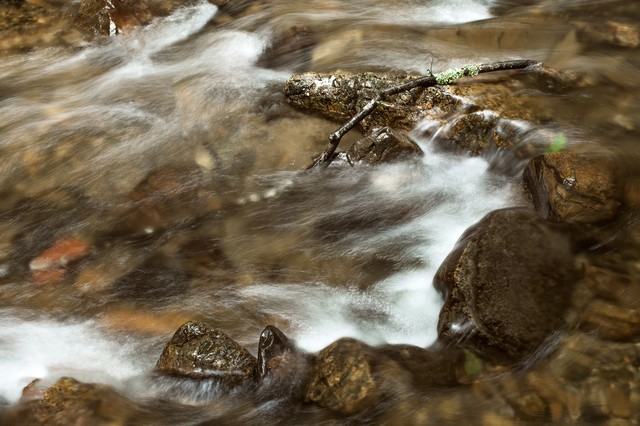 小川の流れの写真