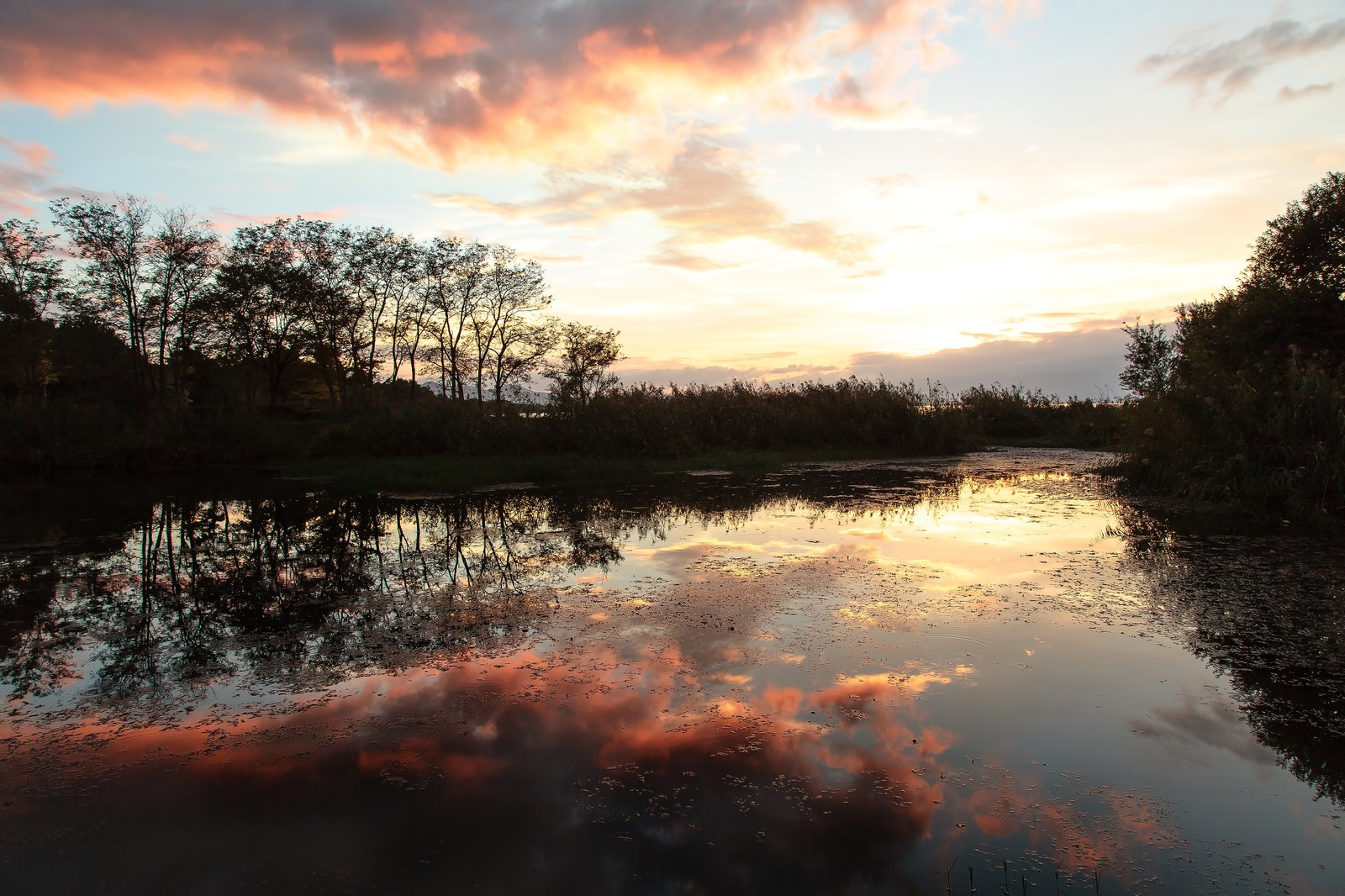 「あかね色の雲が映る水面あかね色の雲が映る水面」のフリー写真素材を拡大
