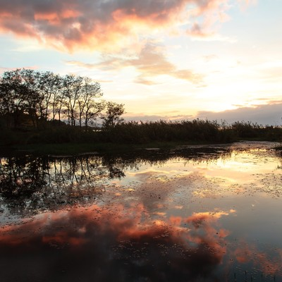 あかね色の雲が映る水面の写真