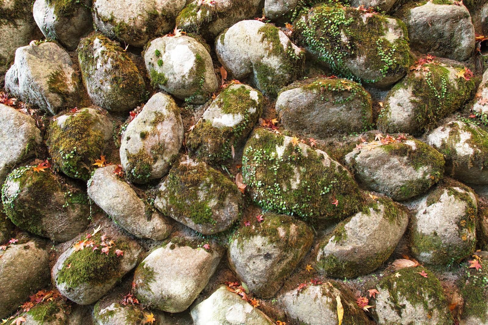 「石壁(テクスチャ)」の写真