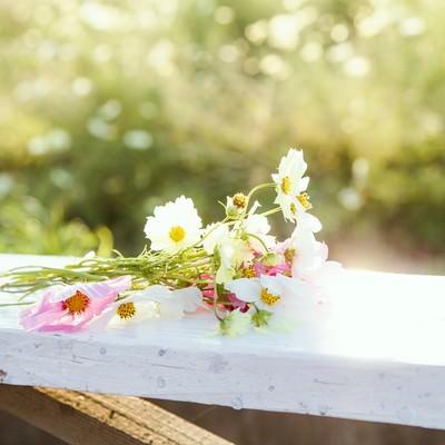 「手すりに置かれた花束」の写真素材