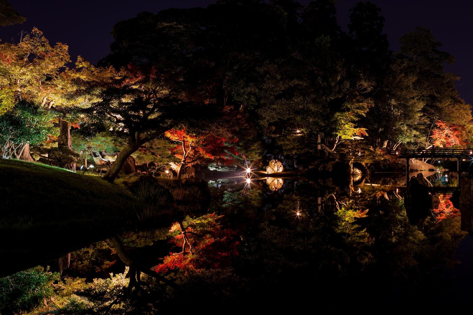 「錦秋の玄宮園のライトアップ」の写真