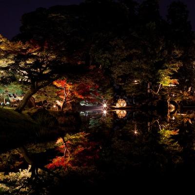 錦秋の玄宮園のライトアップの写真