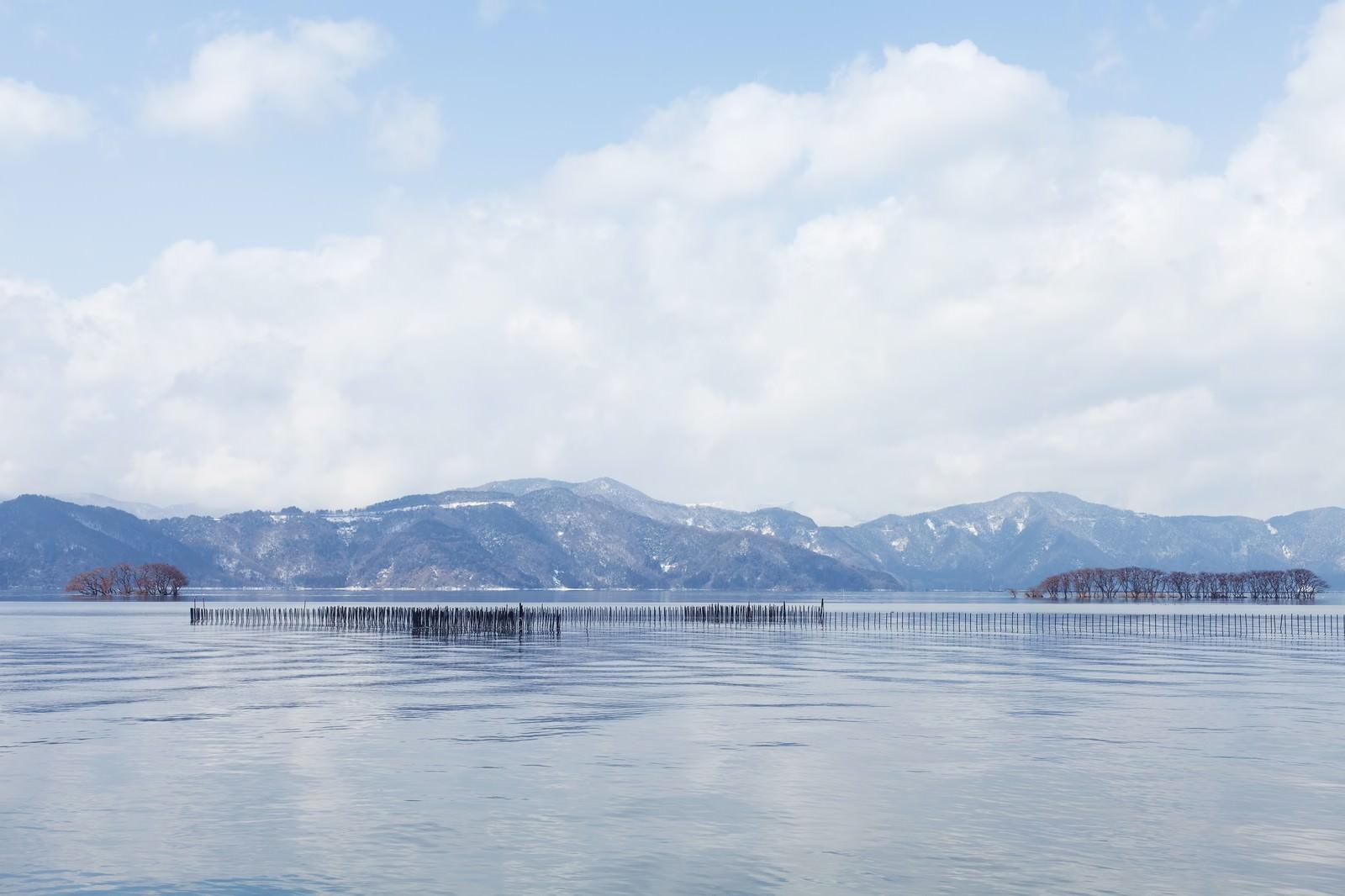 「湖北町から見た琵琶湖の景色」の写真