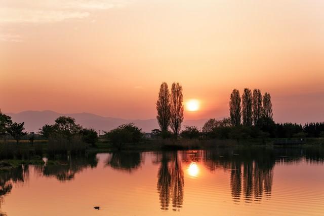 オレンジ色の水面の写真