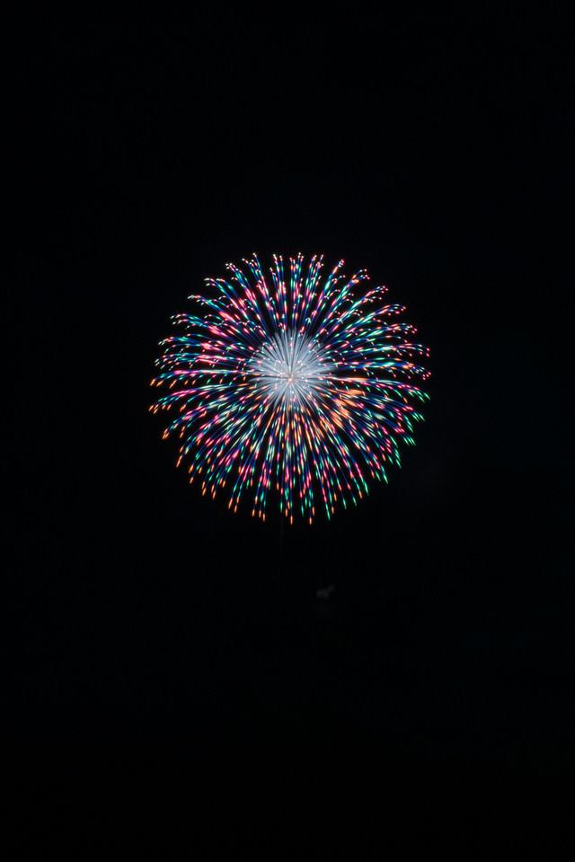 玉虫色の打上花火の写真