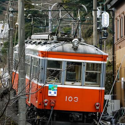 坂を上る箱根登山鉄道の写真