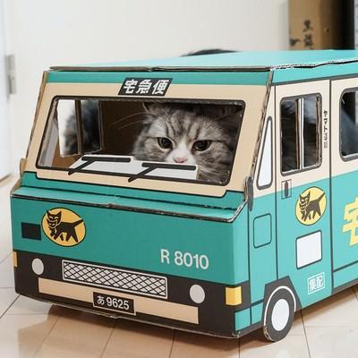 「荷物をお届けにあがりましたー(猫)」の写真素材