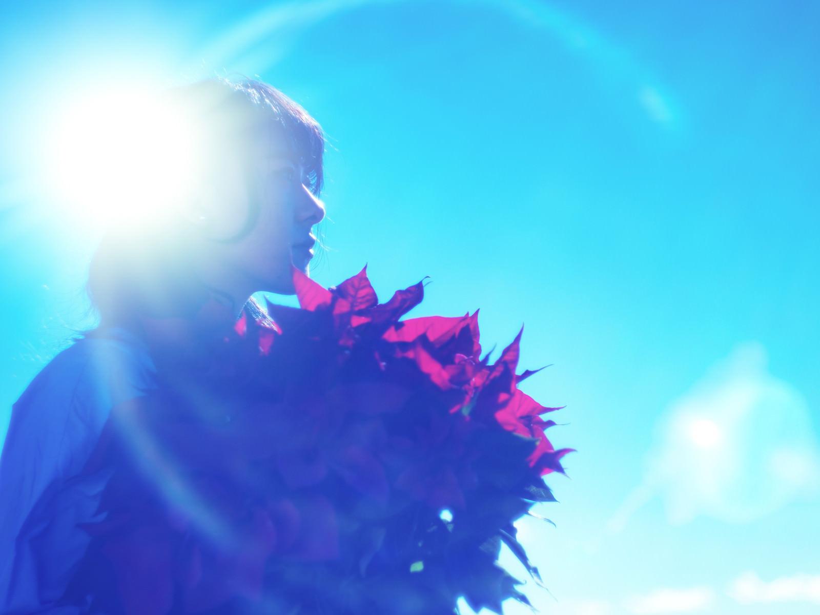 「逆光とポインセチアを持った女性の横顔」の写真[モデル:Mizuho]