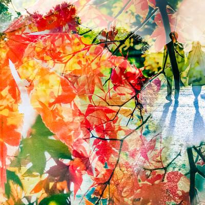 紅葉と二人の写真