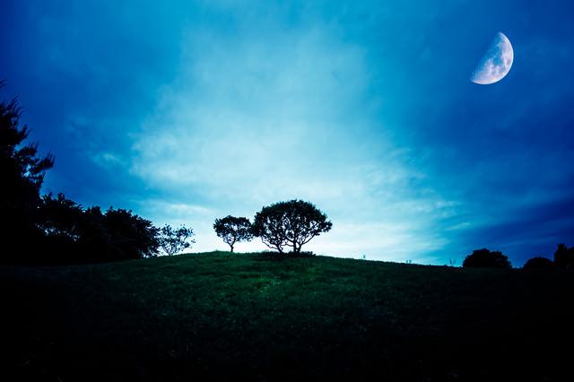 月の見える丘の写真