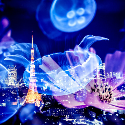 浮かぶくらげと東京タワーの写真